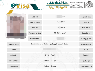 沙特电子签证顺利出签